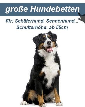 Hundesofa für große Hunde