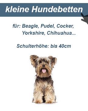 Hundesofa für kleine Hunde