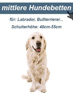 Hundesofa für mittelgroße Hunde
